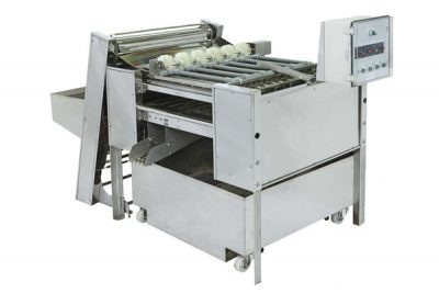 Automatic Chicken Eggs Peeling Machine