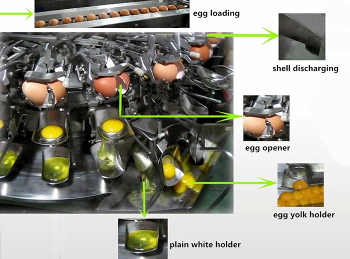Egg Breaking Machine Working Principles