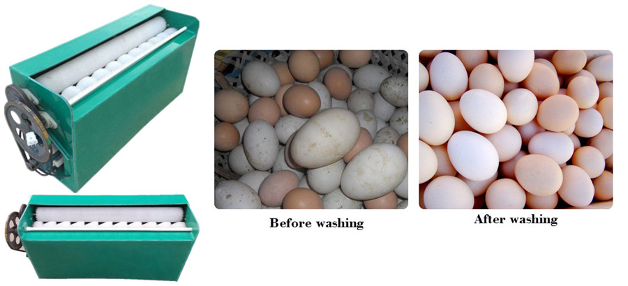 Small type egg cleaning machine
