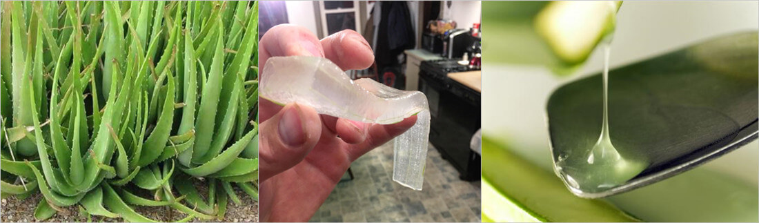 aloe vera peeling for making aloe juice