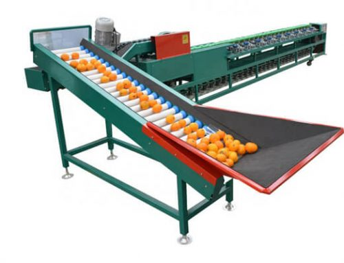 Double Line Fruit Sorting Machine