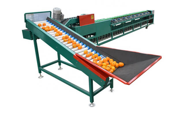 automatic fruit sorting machine
