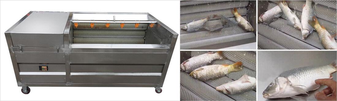 large capacity fish scaling machine