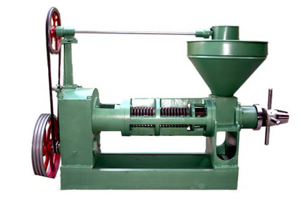 screw oil pressing machine