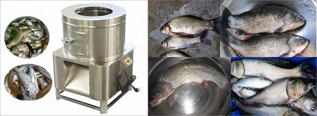 small capacity fish scaling machine