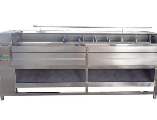 Fruit and Vegetable Cleaner Machine