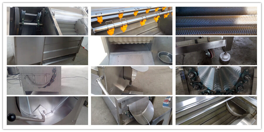 vegetable and fruit peeling machine