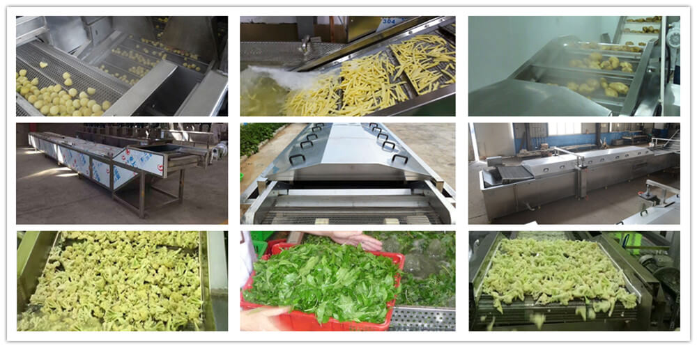 vegetable blanching equipment
