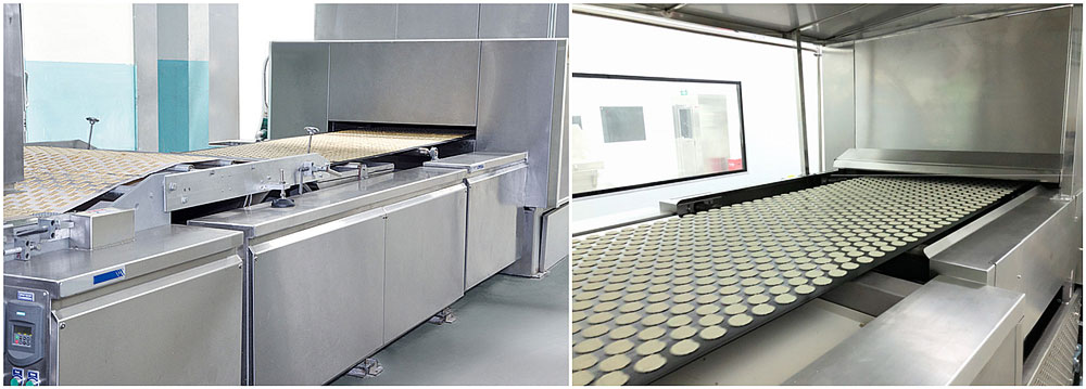 Oven Feeding Machine and Mesh Belt Conveyor