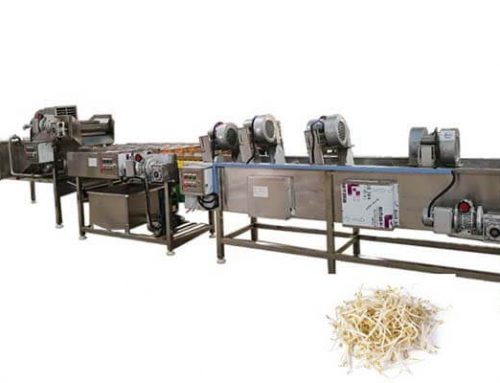 Bean Sprouts Washing and Dewatering Machine Line