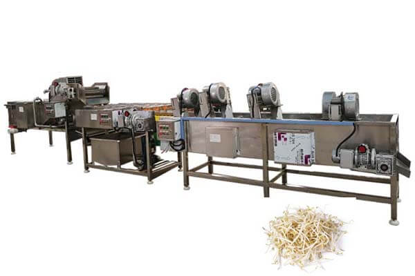 bean sprouts washing dewatering machine line