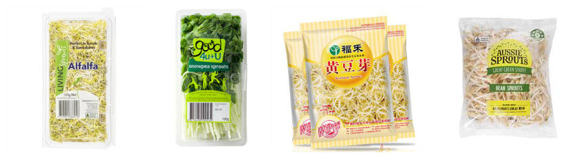 packed bean sprouts