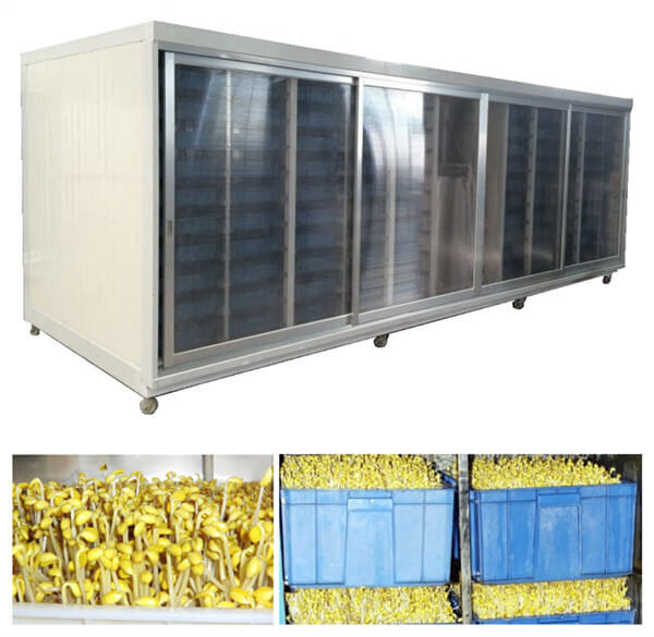 Excellent Performance Automatic Bean Sprouts machine